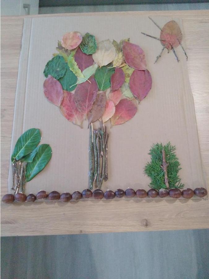 c5beiga-kastrin-jesen-v-gozdu